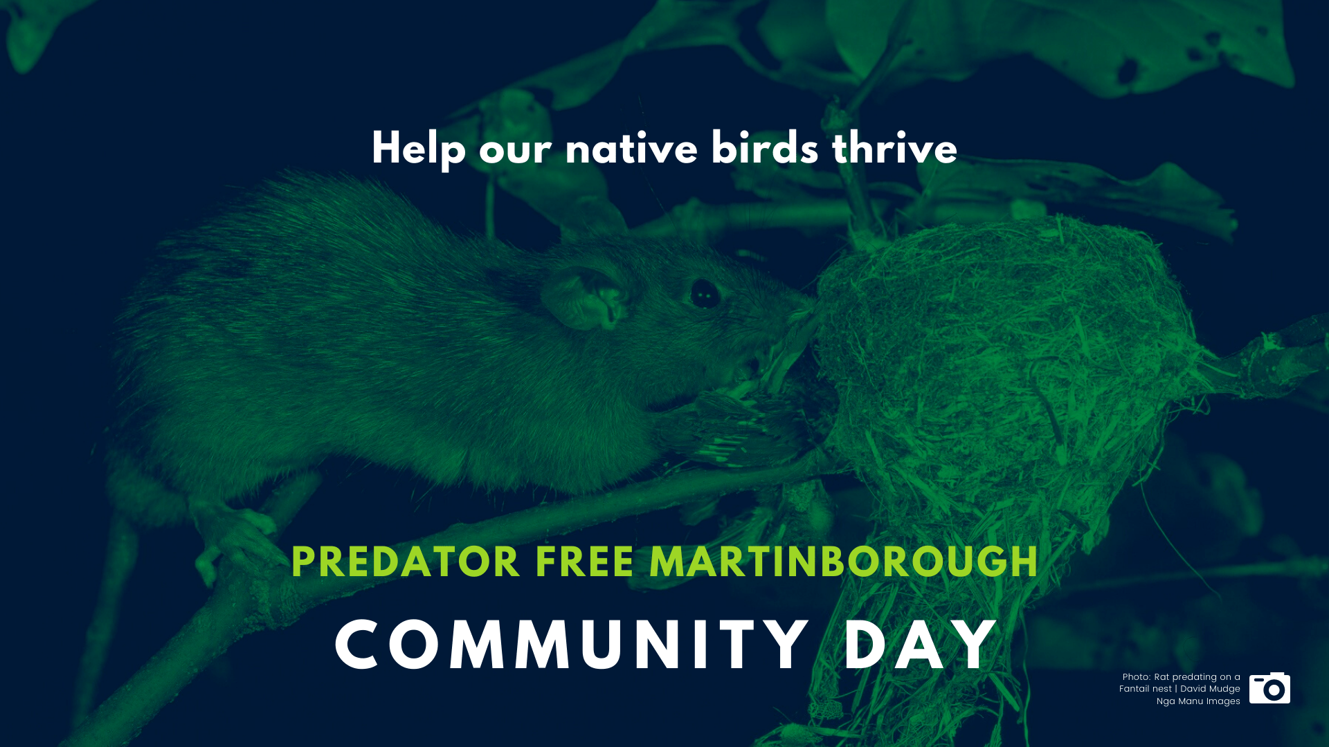 Predator Free Community Day Facebook Event