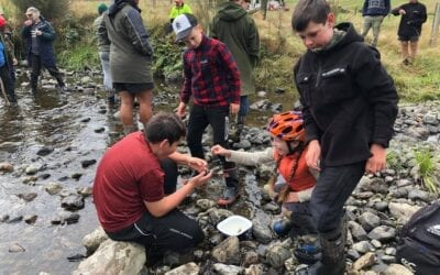 Upper Waipoua Kaitiaki Group making a difference