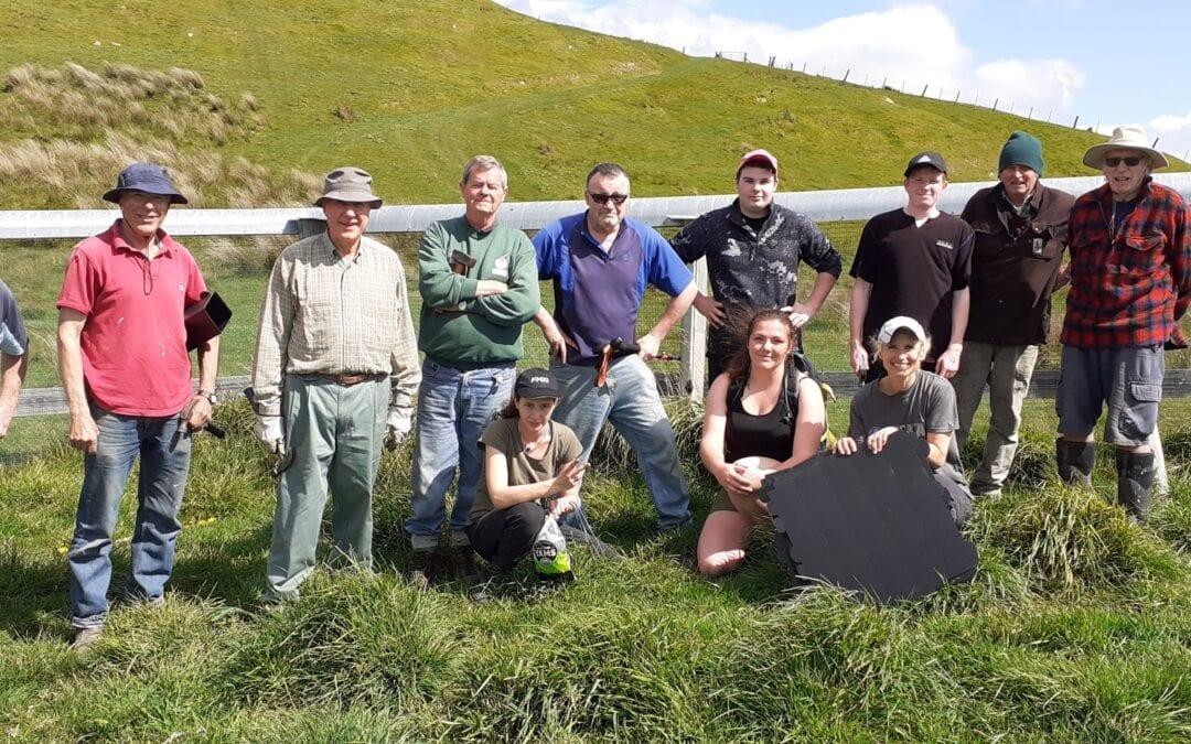Sustainable Wairarapa group at Pontatahi Lizard Sanctuary