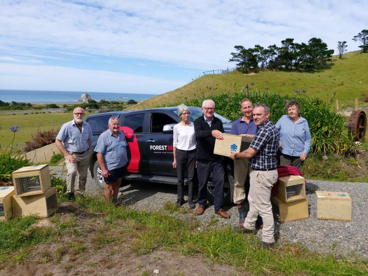 White Rock Dotterel Group Trap Handover