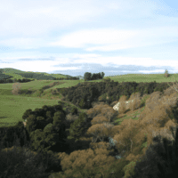 Wainuioru River