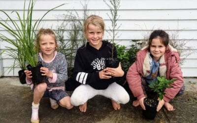 Planting Seeds | Growing a Community: The Wainuioru School and Community Nursery