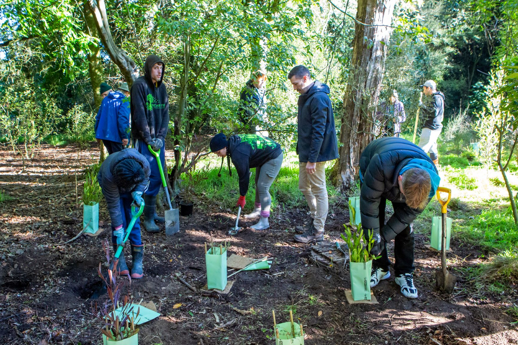 O'Connor's Bush Arbor Day 21 Group Planting Photo Small