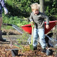 Photo: Hugo Adams helps at the Awatotara Planting Day (Joe Potangaroa)
